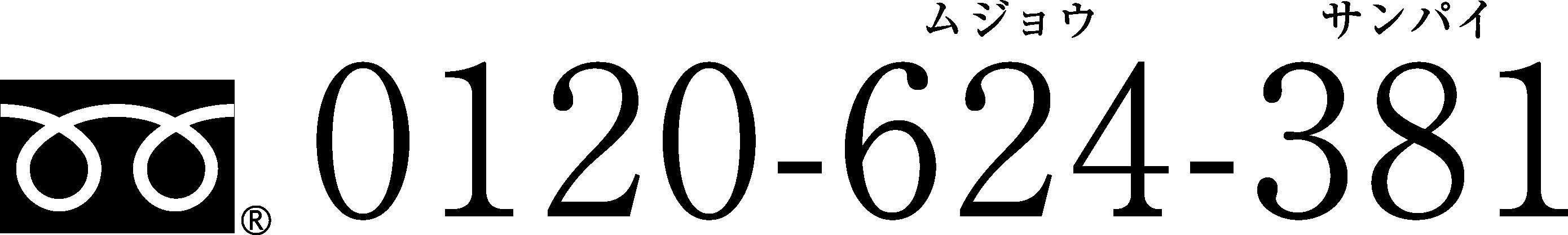 0120-624-381